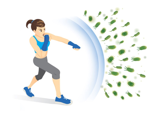 Exercise and your immune system!